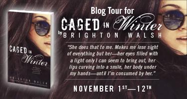 PA-9705 Brighton Walsh Blog Tour Banner.indd